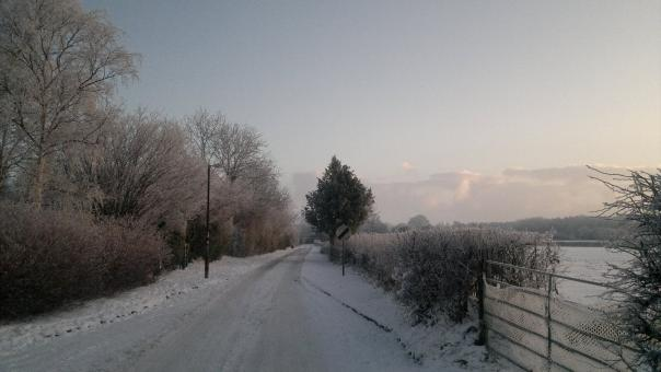 Free Stock Photo of A winters walk