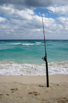 Free Stock Photo of Fishing Pole