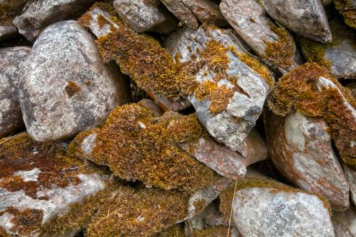 Free Stock Photo of Mossy Rocks Texture