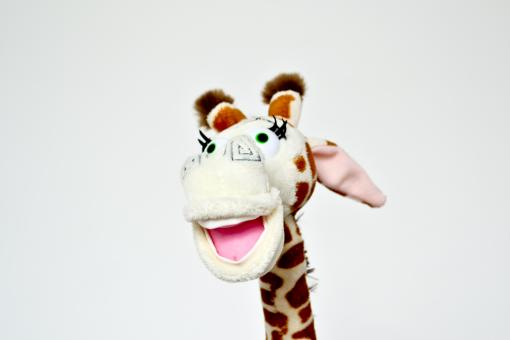 Free Stock Photo of Giraffe toy