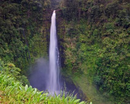 Free Stock Photo of Akaka falls