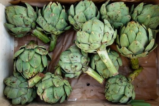 Free Stock Photo of artichoke