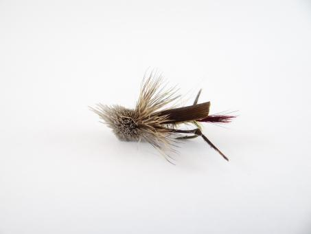 Free Stock Photo of Hopper Dry Fly