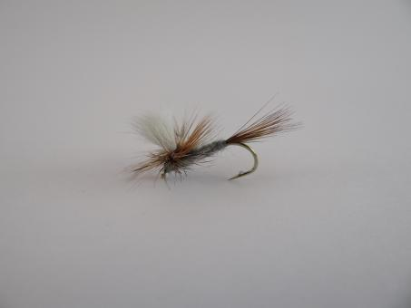 Free Stock Photo of Parachute dry fly