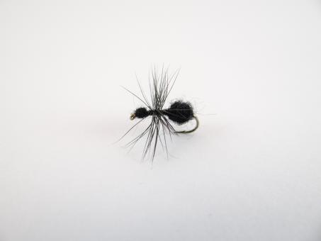 Free Stock Photo of Black Ant dry fly