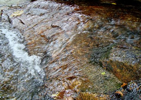 Free Stock Photo of Rocky Stream Background