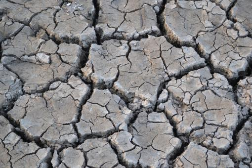 Free Stock Photo of Cracked River Bed
