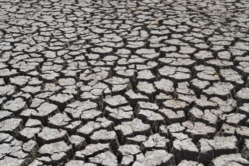 Free Stock Photo of Drought