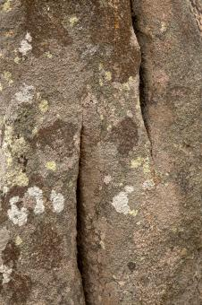 Free Stock Photo of Carnac Stone Texture - HDR