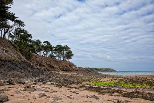 Free Stock Photo of Rugged Beach Landscape - HDR