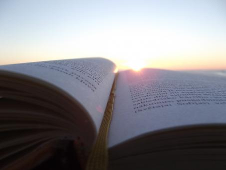 Free Stock Photo of reading until sunset