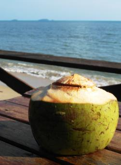Free Stock Photo of Fresh Coconut Drink by the Ocean