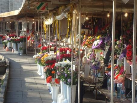Free Stock Photo of Flower market