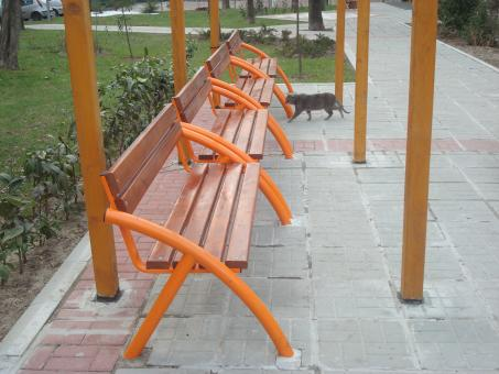 Free Stock Photo of Benches in the park