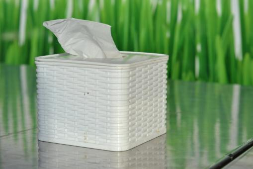 Free Stock Photo of Unique Tissue Box