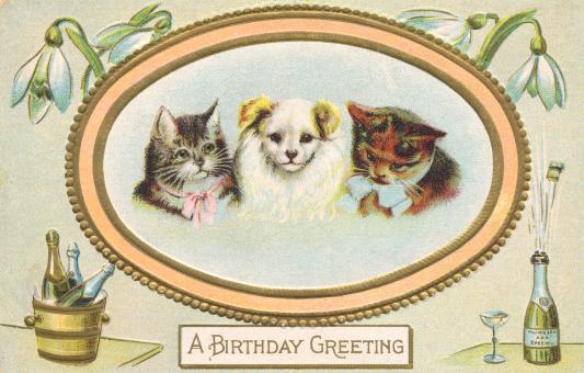 Free Stock Photo of Birthday Greeting Card - Circa 1910s