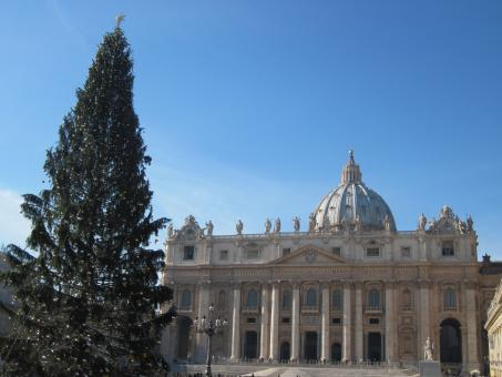 Free Stock Photo of Christmas tree at the St. Peter's s