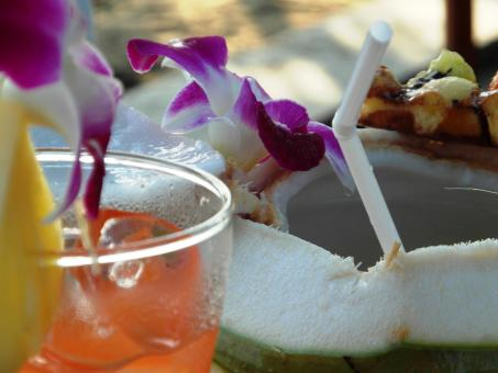 Free Stock Photo of Fresh Coconut Drink on the Beach