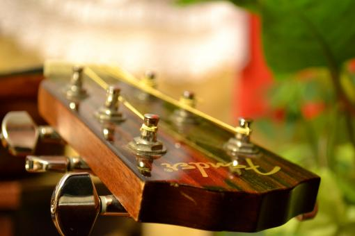 Free Stock Photo of Acoustic guitar tuning pegs