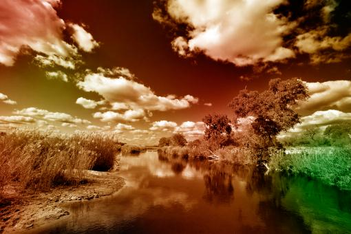 Free Stock Photo of Kruger Park Landscape - PhantasmaChrome