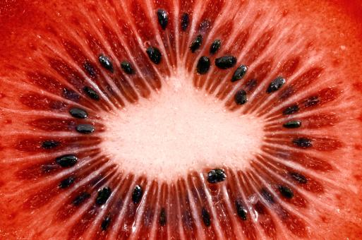 Free Stock Photo of Red Kiwi Slice Macro
