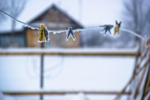 Free Stock Photo of Frozen pegs