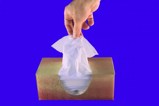 Free Stock Photo of Tissue