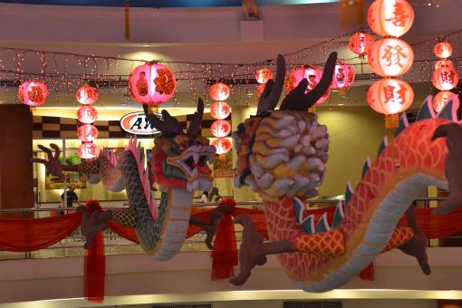Free Stock Photo of Chinese New Year Dragons