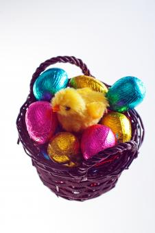 Free Stock Photo of Easter