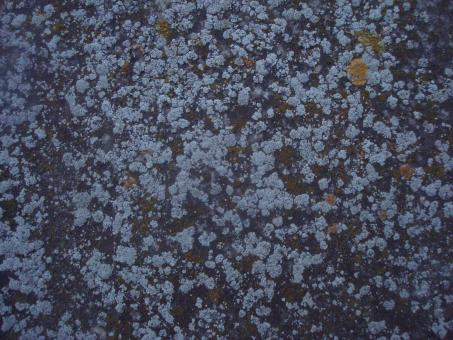 Free Stock Photo of Grunge stone texture