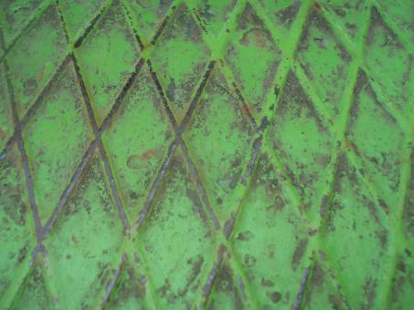 Free Stock Photo of Green metal grid