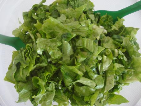 Free Stock Photo of Fresh green salad