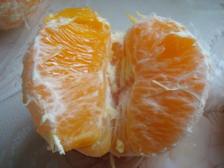 Free Stock Photo of Fresh orange