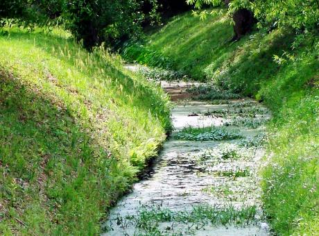 Free Stock Photo of Drainage Ditch