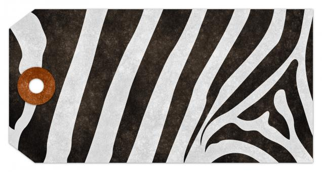 Free Stock Photo of Grunge Tag - Zebra Stripes