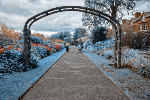 Free Stock Photo of Blue Belfast Botanic Gardens - HDR
