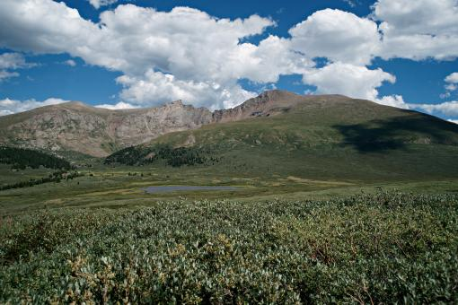 Free Stock Photo of Guanella Pass Mt Bierstadt