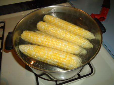 Free Stock Photo of Corn on the cob
