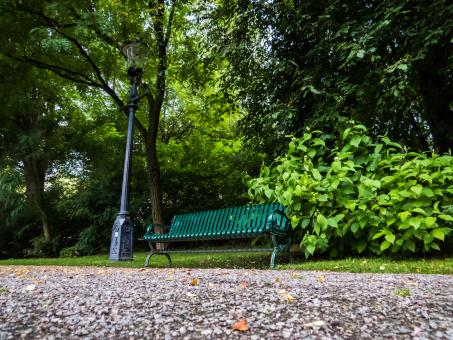 Free Stock Photo of Bench in the park