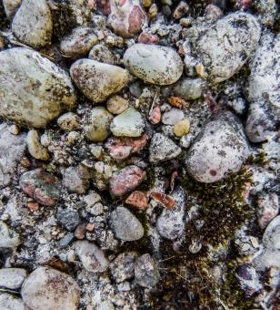Free Stock Photo of Stones texture
