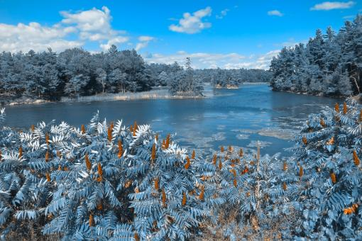 Free Stock Photo of Thousand Islands Scenery - Wintry Blue