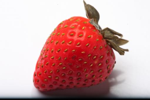 Free Stock Photo of Strawberry isolated on white background