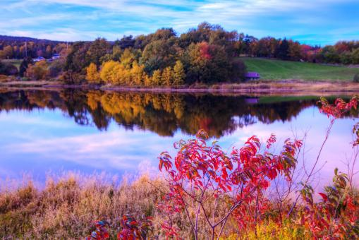 Free Stock Photo of Autumn Lake