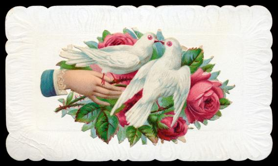 Free Stock Photo of Antique Victorian Trade Card