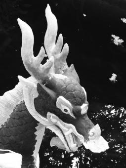Free Stock Photo of Chinese Dragon Black and White