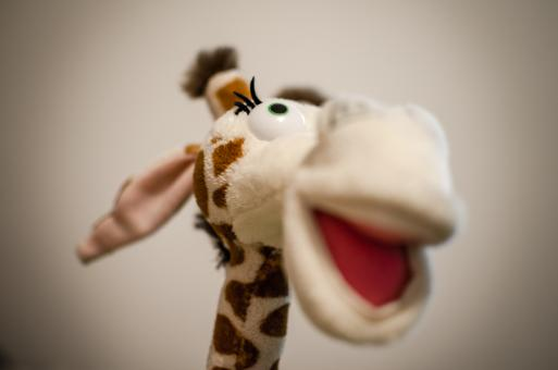 Free Stock Photo of Cool giraffe toy