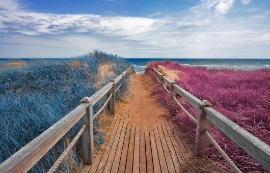Free Stock Photo of Split Tone Beach Boardwalk - Blue & Pink