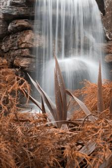 Free Stock Photo of Sepia Waterfall Foliage - HDR
