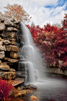 Free Stock Photo of Zoo Waterfall - Autumn Warm HDR