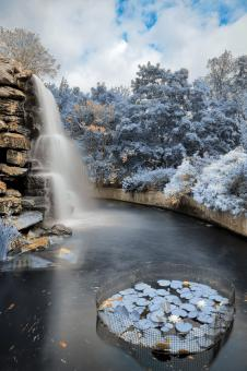Free Stock Photo of Zoo Waterfall - Winter Blue HDR